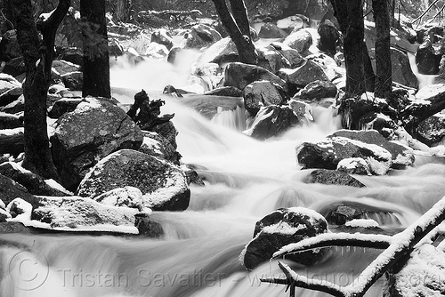 mountain creek in winter, boulders, creek, flowing, river, rocks, snow, trees, whitewater, winter, yosemite national park
