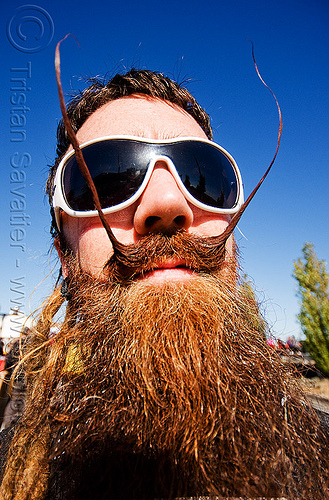 moustache wax - beard - superhero street fair (san francisco), beard, islais creek promenade, man, moustache wax, moustaches, mustache, sunglasses, super hero, superhero street fair