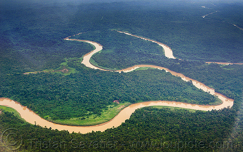 muddy river meanders in the jungle, aerial photo, bend, borneo, jungle, malaysia, meanders, muddy river, rain forest, winding river