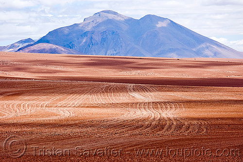 multiple dirt tracks - high desert (bolivia), altiplano, bolivia, dirt roads, environment, pampa, ruts, unpaved