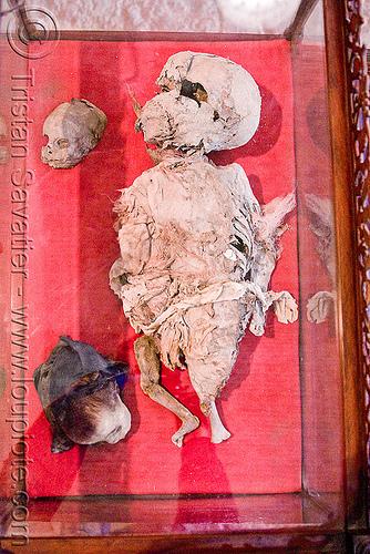 mummified babies, cadaver, casa de la moneda, casa nacional de moneda, child, corpse, dead, gruesome, human remains, macabre, morbid, mummy, potosí