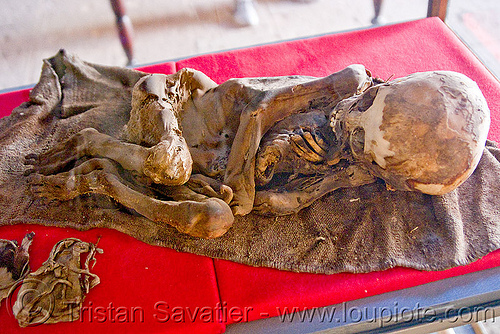 mummified body of a child, cadaver, casa de la moneda, casa nacional de moneda, child, corpse, dead, gruesome, human remains, macabre, morbid, mummified, mummy, potosí
