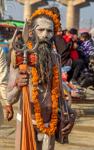naga baba with trident at the kumbh mela hindu festival (india), beard, damaru drum, flower necklace, hindu, hinduism, kumbha mela, maha kumbh mela, man, marigold flowers, naga baba, naga sadhu, necklaces, orange flowers, ritual drum, rudraksha beads, trident