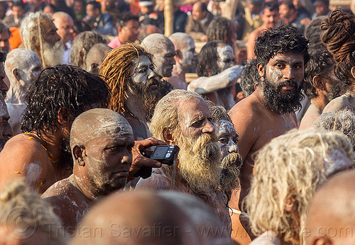 naga sadhus going to the ganges river for holy bath - kumbh mela 2013 festival (india), amavasa, beard, crowd, digital camera, dreadlocks, dreads, hindu, hinduism, holy ash, kumbh maha snan, kumbha mela, maha kumbh mela, mauni amavasya, men, naga babas, naga sadhus, naked, procession, sacred ash, triveni sangam, vibhuti, walking