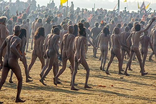 naga sadhus procession - kumbh mela (india), crowd, hindu, hinduism, holy ash, kumbh maha snan, kumbha mela, maha kumbh mela, mauni amavasya, men, naga babas, naga sadhus, naked, procession, sacred ash, triveni sangam, vibhuti, walking