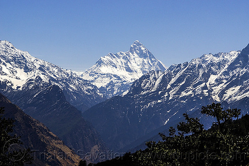 nanda devi mountain (india), india, mountains, nanda devi, peak, snow, summit