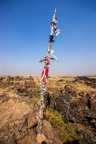 native american offerings on memorial stick - captain jack's stronghold, basalt, captain jack's stronghold, flags, indigenous, lava beds national monument, memorial, modoc, native american, offerings, pole, rock, stick, stone, tribal, wooden