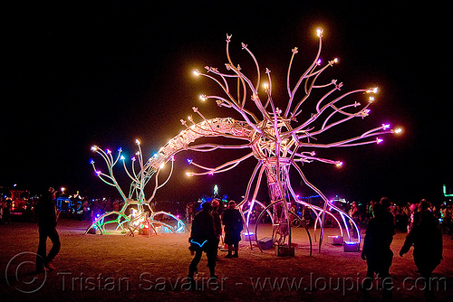 neuron sculpture - burning man 2009, art installation, burning man, dendrites, flaming lotus girls, neurone, night, soma