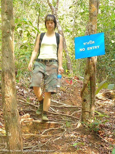 ทางปิด - no entry sign - thailand, forest, hiking, no entry, no trespassing, roots, sign, thailand, trail, trees, woman, ทางปิด