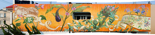 noe valley mural by mona caron (san francisco), art, mona caron, mural, noe valley, orange, painted, painting, photo stitching, plants, stitched, vegetables, wall
