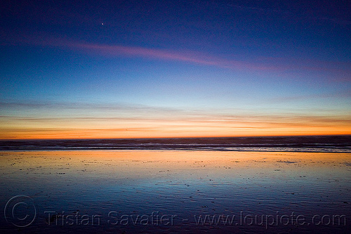 ocean beach sunset (san francisco), ocean beach, planet venus, reflection, sea, seashore, shore, sunset, water