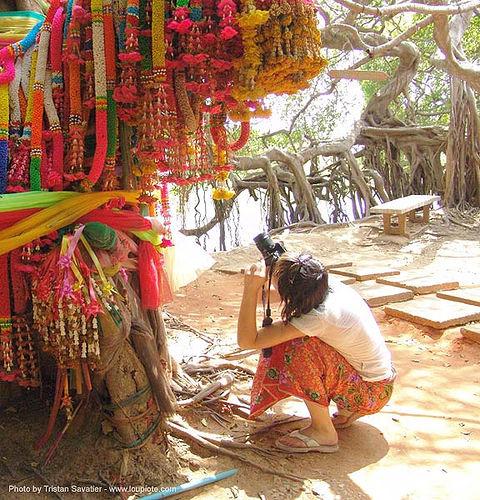 ผ้าแพรเจ็ดสี ต้นไทร พิมาย - offerings - giant banyan tree (near phimai) - thailand, anke rega, banyan tree, offerings, phimai, photographer, woman, ต้นไทร, ประเทศไทย, ผ้าแพรเจ็ดสี, พิมาย