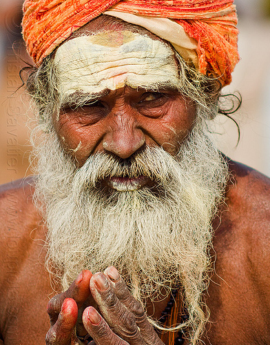 old hindu baba with white beard (india), baba, bear, fingers, hands, headdress, hindu pilgrimage, hinduism, india, maha kumbh mela, old man, paush purnima, sadhu, tilak, turban, white beard
