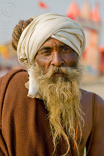 old hindu pilgrim at kumbh mela 2013, baba, beard, dreadlocks, dreads, headdress, hearwear, hindu, hinduism, kumbha mela, maha kumbh mela, man, pilgrim, sadhu, tilak, tilaka, turban, yatri
