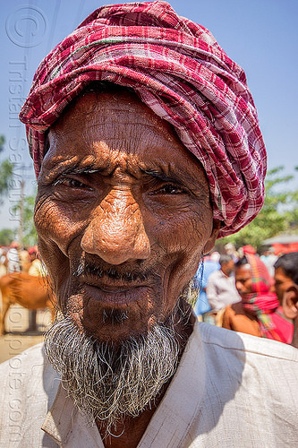 old indian muslim man with goatee (india), beard, goatee, headdress, india, man, muslim, turban, west bengal