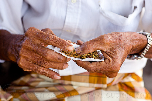 old man rolling-up cigarette, cigarette paper, hands, lombok, old man, rolling tobacco, wristwatch