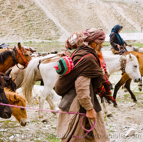 old man with baby - nomads with horses - drass valley - leh to srinagar road - kashmir, baby, caravan, dras valley, drass valley, horse riding, horseback riding, india, infant, kashmir, kashmiri gujjars, mountains, muslim, nomads, old man, pack animal, pack horses, road, zoji la, zoji pass, zojila pass