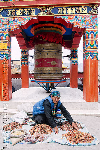 old woman selling dried apricots - tibetan prayer wheel - leh (india), dried apricots, india, ladakh, leh, old woman, prayer mill, prayer wheel, street seller, street vendor, tibetan, लेह