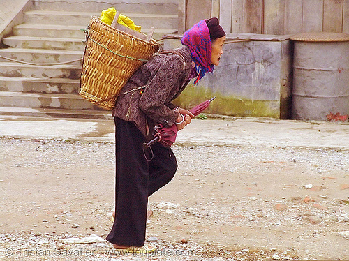 old woman with heavy bag - vietnam, heavy bag, hill tribes, indigenous, old woman, quản bạ, tám sơn, vietnam