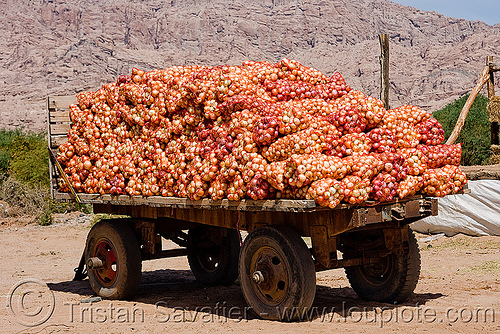 onion bags on farmer's trailer, cachi, calchaquí valley, farm trailer, farmer's, noroeste argentino, onions, produce, valles calchaquíes, vegetable