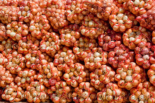 onions, farmer's, noroeste argentino, onion bags, onions, produce, vegetable
