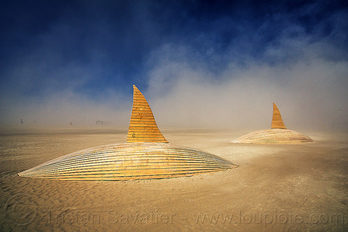 orcas swimming in the desert - burning man 2016, art installation, burning man, orca project, orcas, sculpture