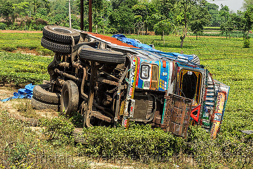 overturned truck in tea plantation (india), crash, ditch, field, india, lorry, overturned, road, rollover, tata motors, tea plantation, traffic accident, truck accident, west bengal, wreck