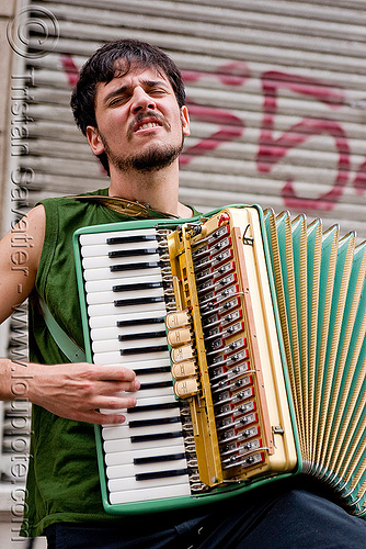 piano accordion player, accordion player, buenos aires, man, pequeña orquesta klezmer, piano accordion, san telmo, segundo mundo