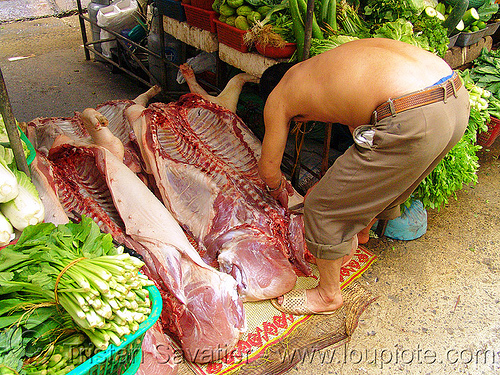 pig carcasses in market - meat - vietnam, butcher, carcass, carcasses, hanoi, man, meat market, meat shop, pigs, pork, raw meat, rib cage, ribs, spine, street market
