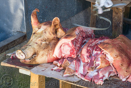 pig head and fresh pork meat - shop - sagada (philippines), meat market, meat shop, philippines, pig head, pork meat, raw meat, sagada, stall