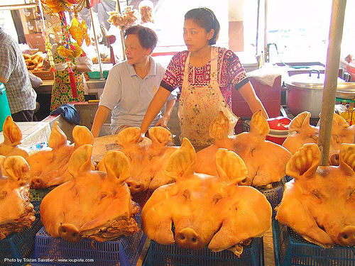 pig heads - thailand, asian woman, asian women, cooked meat, meat market, meat shop, merchant, pig heads, pigs, porks, thailand, vendor