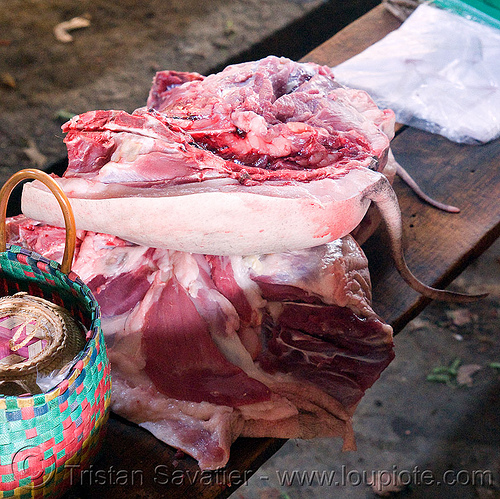 pig quarters in meat market (laos), laos, meat market, meat shop, pig, pork, raw meat, tail