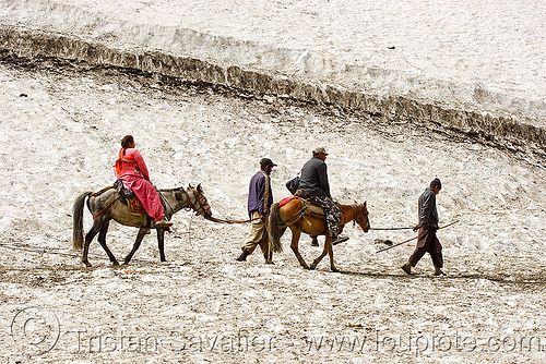 pilgrims on ponies on glacier trail - amarnath yatra (pilgrimage) - kashmir, amarnath yatra, glacier, hiking, hindu pilgrimage, horse-riding, horseback riding, horses, india, kashmir, kashmiris, mountain trail, mountains, pilgrims, ponies, pony-men, snow, trekking, woman