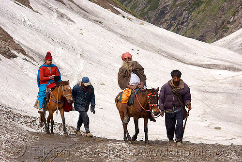 pilgrims on ponies on glacier trail - amarnath yatra (pilgrimage) - kashmir, amarnath yatra, glacier, hiking, hindu pilgrimage, horse-riding, horseback riding, horses, india, kashmir, kashmiris, mountain trail, mountains, pilgrims, ponies, pony-men, snow, trekking