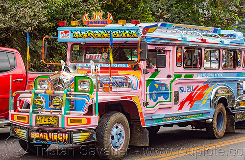 pink and blue jeepney (philippines), baguio, colorful, decorated, jeepney, painted, philippines, road, truck