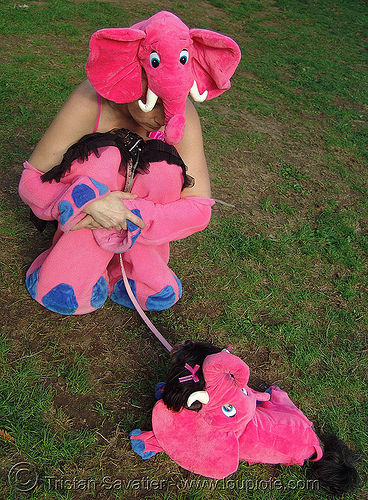 pink elephants (halloween, san francisco), costumes, dog, halloween, pink elephants, woman