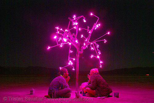 pink tree at night - digital hanami - burning man 2007, art installation, digital hanami, doug weigel, ludwig, night, pink, tree
