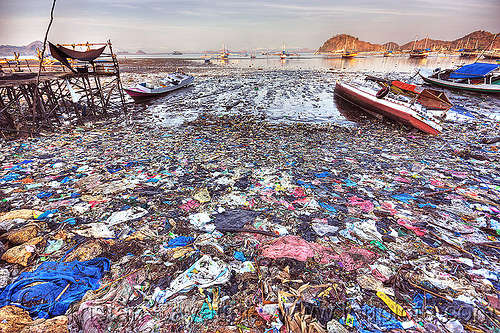 trash on beach, beach, boats, environment, flores, garbage, labuan bajo, low tide, plastic trash, pollution, rubbish, seashore, shore