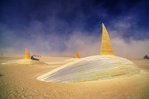 pod of desert orcas - burning man 2016, art installation, burning man, orca project, orcas, sculpture