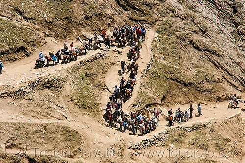 ponies and pilgrims on the trail - amarnath yatra (pilgrimage) - kashmir, bends, caravan, crowd, horse-riding, horseback riding, horses, kashmiris, mountain trail, mountains, switch-backs, trekking, yatris, अमरनाथ गुफा
