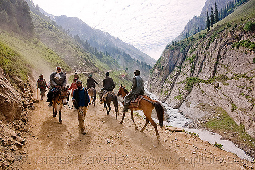 ponies and pilgrims on the trail - amarnath yatra (pilgrimage) - kashmir, amarnath yatra, hiking, hindu pilgrimage, horse-riding, horseback riding, horses, india, kashmir, kashmiris, mountain trail, mountains, pilgrims, ponies, trekking