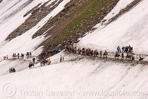 ponies and pilgrims on the trail - amarnath yatra (pilgrimage) - kashmir, amarnath yatra, glacier, hiking, hindu pilgrimage, horse riding, horseback riding, horses, india, kashmir, kashmiris, mountain trail, mountains, pilgrims, ponies, snow, trekking