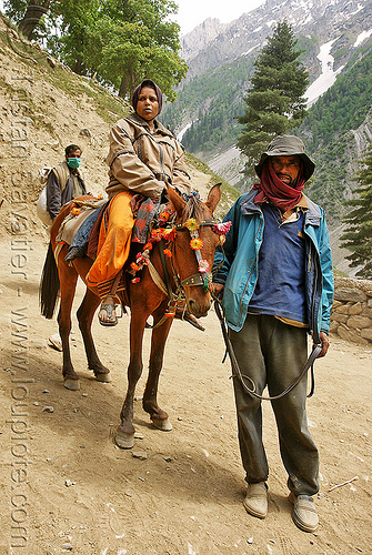 pony-man with pilgrim - amarnath yatra (pilgrimage) - kashmir, amarnath yatra, hiking, hindu pilgrimage, horse riding, horseback riding, india, kashmir, kashmiri, mountain trail, mountains, pack animal, pack horse, pilgrim, pony-man, trekking