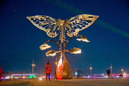 portal of evolution at night - butterfly - burning man 2009, art installation, bryan tedrick, burning man, butterfly, long exposure, night, portal of evolution