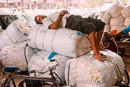 porter sleeping - delhi (india), bearer, cart, man, napping, porter, sleeping, wallah