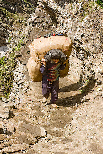 porter with heavy bag on trail - amarnath yatra (pilgrimage) - kashmir, amarnath yatra, bag, bearer, hiking, hindu pilgrimage, india, kashmir, man, mountain trail, mountains, pilgrim, porter, trekking, wallah