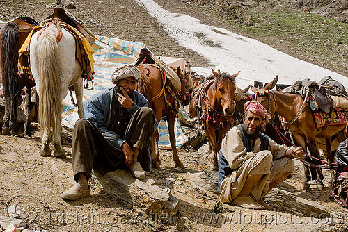 porters with their ponies - amarnath yatra (pilgrimage) - kashmir, amarnath yatra, crowd, glacier, hiking, hindu pilgrimage, horse riding, horseback riding, horses, india, kashmir, kashmiris, men, mountain trail, mountains, pilgrims, ponies, porters, snow, trekking, wallahs