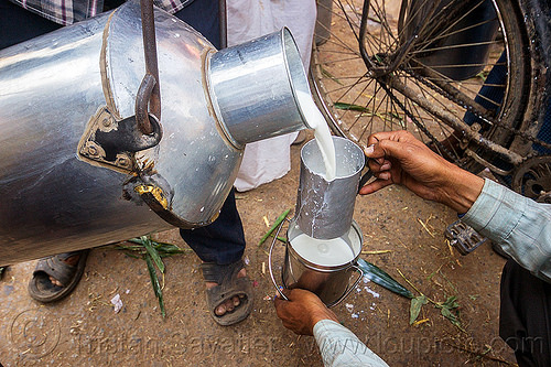 pouring raw milk - metal milk container (india), doodh-wallah, india, milk man, milk market, pouring, varanasi
