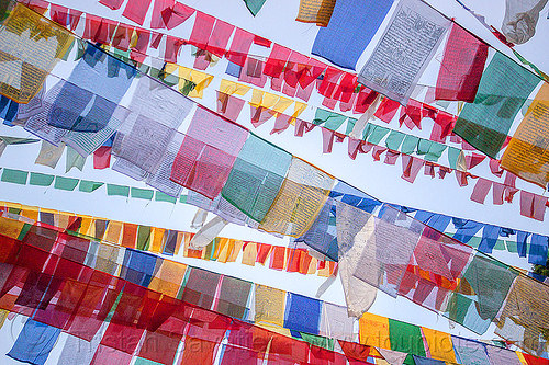 prayer flags (india), buddhism, darjeeling, india, observatory hill, prayer flags, tibetan