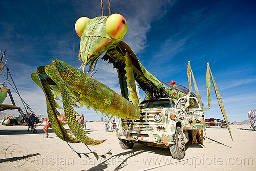 praying mantis art car, burning man, lorry, mantis art car, praying mantis, truck